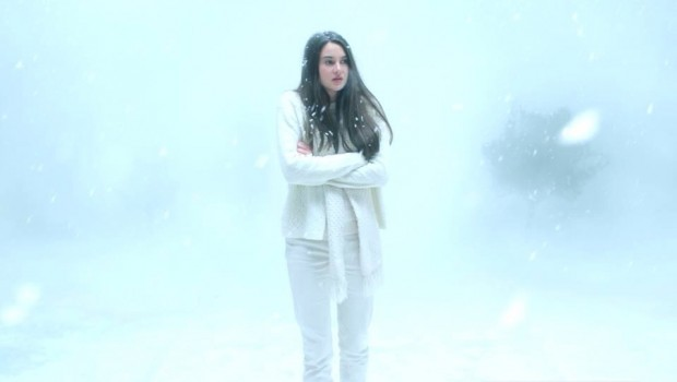 1white bird in a blizzard
