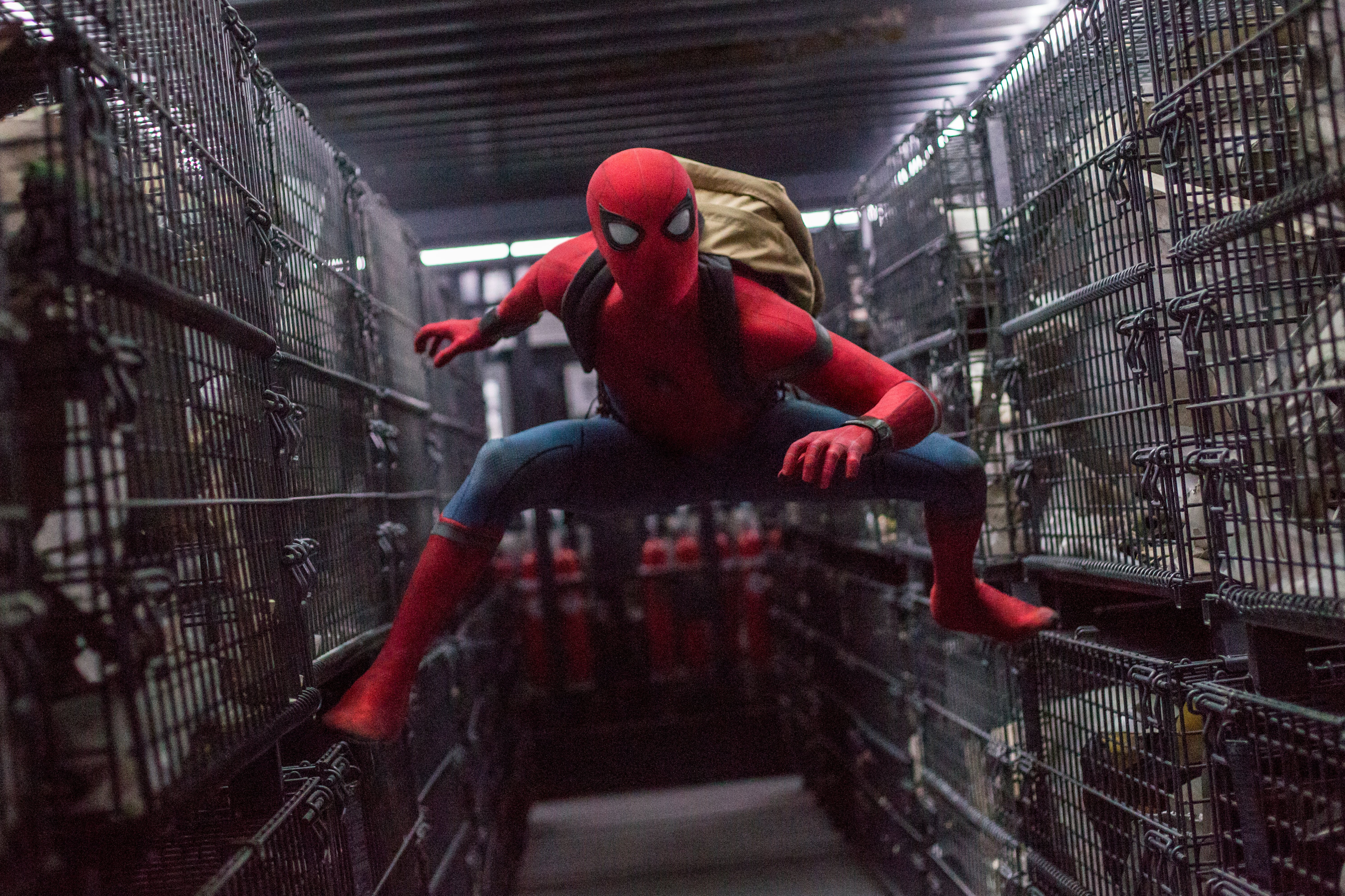 Spiderman Homecoming © Sony Pictures